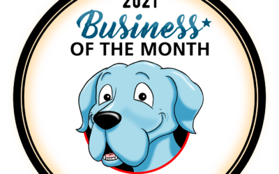 Good Vet and Pet Guide Business of The Month